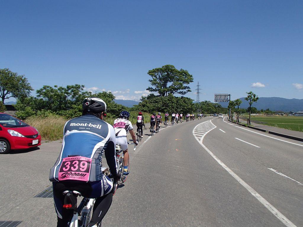 2015も新潟シティライド120kmに行ってきた